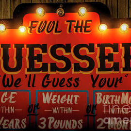 Fool The Guesser by Janice Pariza