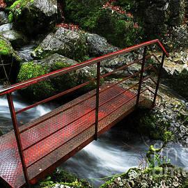 Foot Bridge, Skelwith Force. by Mark Haynes