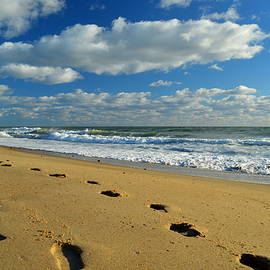 Foot Prints in the Sand by Dianne Cowen