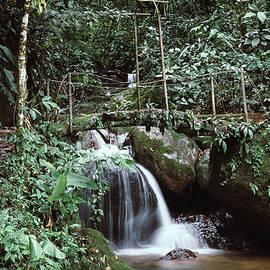 Footbridge over a creek in Costa Rica by Alexey Stiop