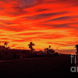 Foothill Sunset by Robert Bales