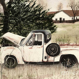 Ford F100 by Bonnie Young