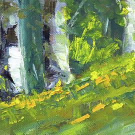Forest Impression by Nancy Merkle