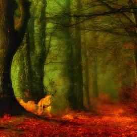Forest in the morning by Jerzy Czyz