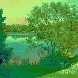 Forest Park - Jefferson Lake by Nancy Kane Chapman