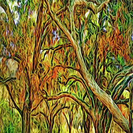 Forest Path Enchantment by Joel Bruce Wallach