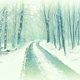 Forest Road in Winter Scenery by Slawek Aniol