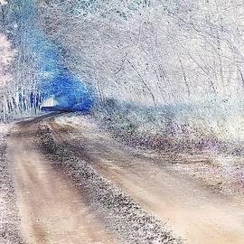 Forest Tale #51 by Slawek Aniol