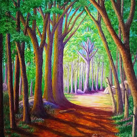 Forest Trail by Sarah Irland