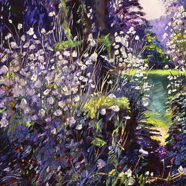 Forest Wildflowers by David Lloyd Glover