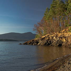 Forested Island in the Bay of  Northern sea  by Alex Lyubar