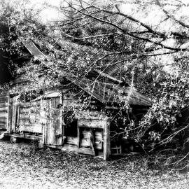Forgotten Barn In Black and White by Kay Brewer