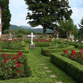 Formal Rose Garden by Amy Sorvillo
