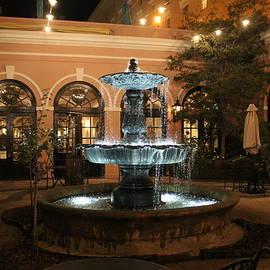 Fountain Courtyard At Night by Cynthia Guinn