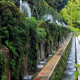 Fountains in Tivoli, Italy by Alex Nikitsin