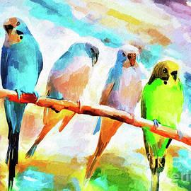 Four Little Parakeets by Tina LeCour