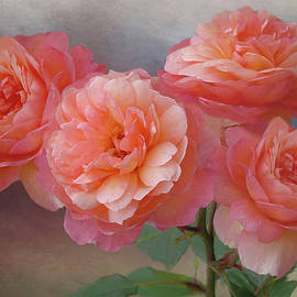 Four Roses for Four by Isabela and Skender Cocoli