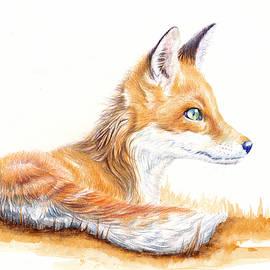 Fox Cub Alert by Debra Hall