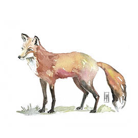 Foxy by Luisa Millicent