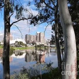 Framing the Adelaide Festival Center and Hotels, River Torrens, Adelaide C.B.D.  by Rita Blom
