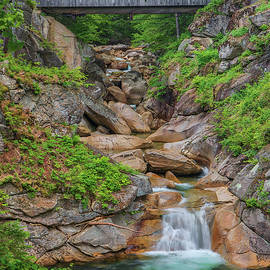 Franconia Notch State Park Sentinel Pine Covered Bridge by Juergen RothNew Hampshire Flume Gorge Sentinel Pine Co