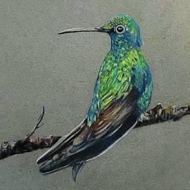 Free Bird by Nancy Rabe