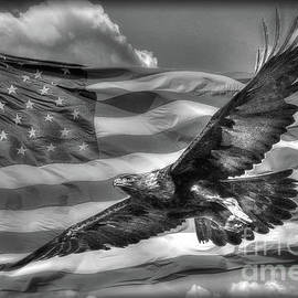 Freedom in Black and White