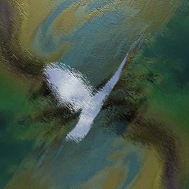 Freedom Sacred Flight by Steve Solomon