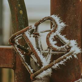 Freeze Brand by Riley Bradford