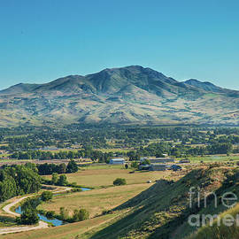 Freeze Out Hill View by Robert Bales