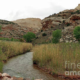 Fremont River - Capital Reef  by Christiane Schulze Art And Photography