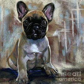 French Bulldog Puppy by Cat Culpepper