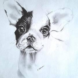 French Bulldog Puppy by Leann Horrocks
