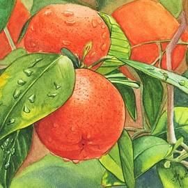 Fresh Oranges by Swati Singh