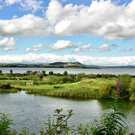 From Castle Espie To Scrabo  by Neil R Finlay