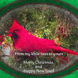 From My Nest To Yours by Diane Lindon Coy