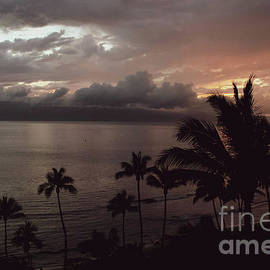 From the Shores of Maui Sunset by Connie Raynor