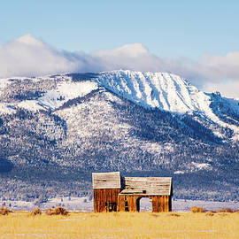 Frosty and Weathered by Mike Lee