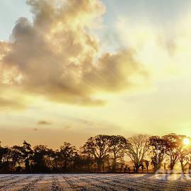 Frosty farmland sunrise in Norfolk UK by Simon Bratt Photography LRPS