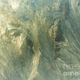Frosty Window Abstract Macro by Stephen Thomas