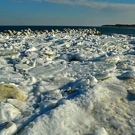 Frozen Corporation Beach by Dianne Cowen