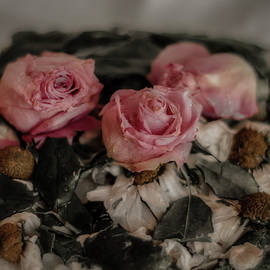Frozen flowers by Rita Di Lalla