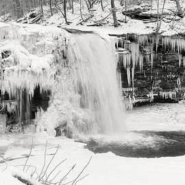 Frozen Harrison Wright Falls by Lori Deiter