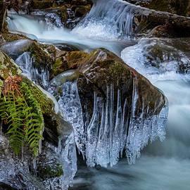 Frozen in Time by Bill Wakeley
