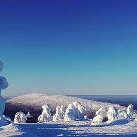 Frozen landscape by Abrahan Fraga