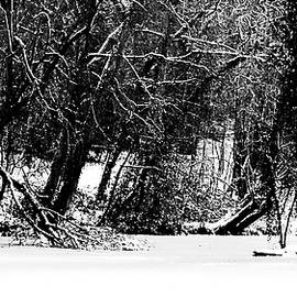 Frozen Pond 13 BW WF by Lynne Iddon