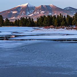 Frozen Wetlands in Flagstaff by Juliana Swenson