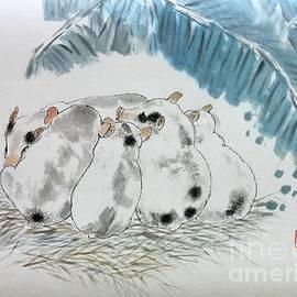 Fu PIG by Carmen Lam