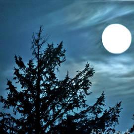 Full Moon - Sandlake - Oregon by Artistic Oregon Photo