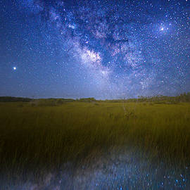 Galaxy in the Glades by Mark Andrew Thomas